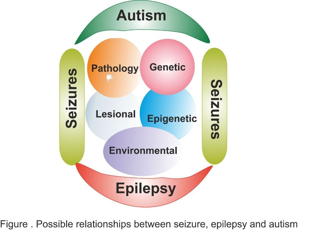Autism, Epilepsy and Seizures